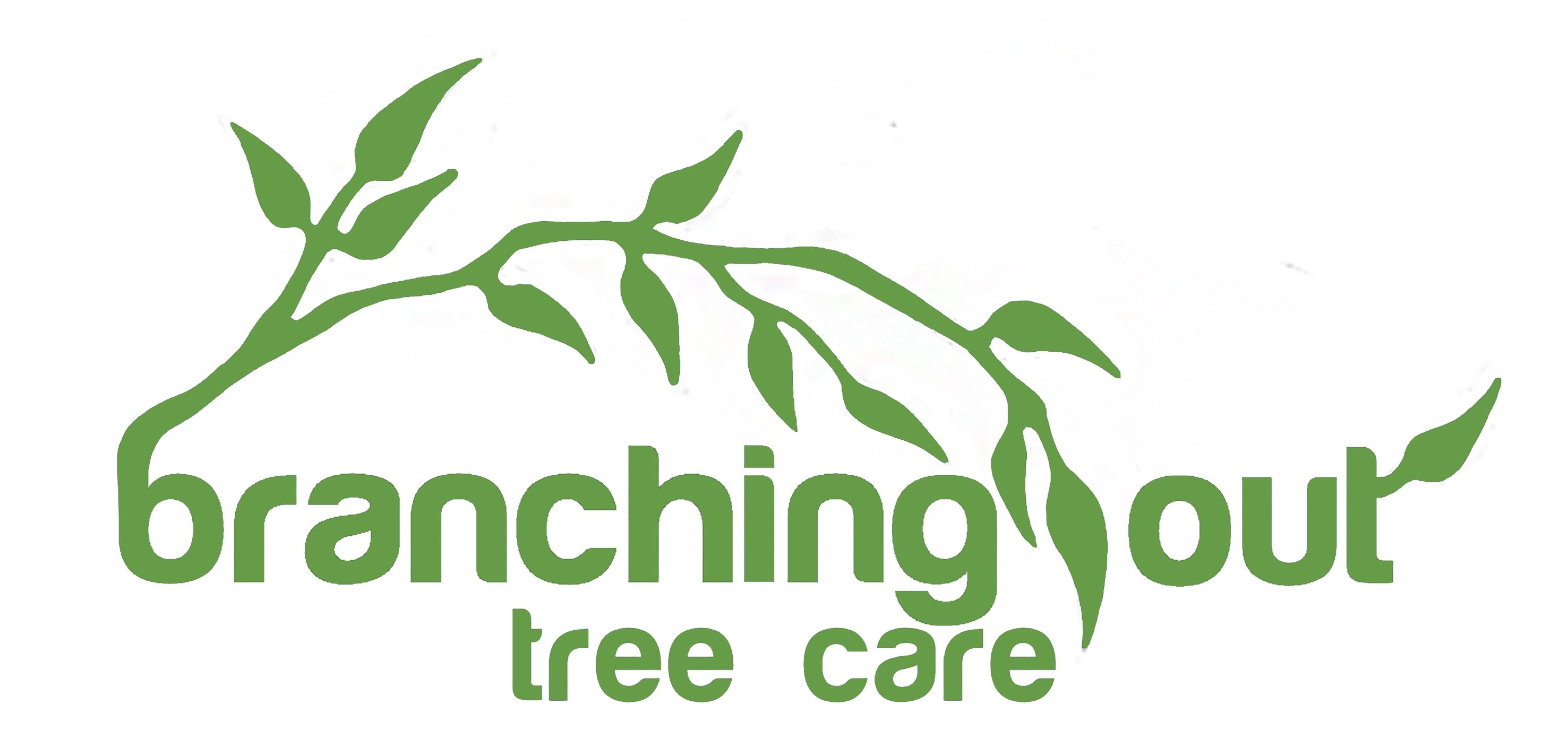 branching out logo green on white